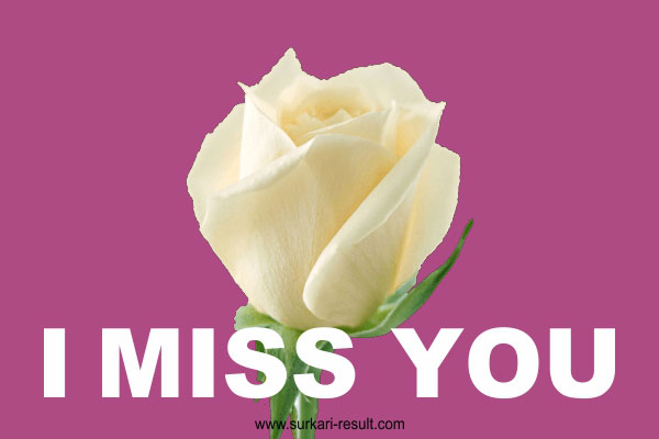 i-miss-you-image-rose-flower