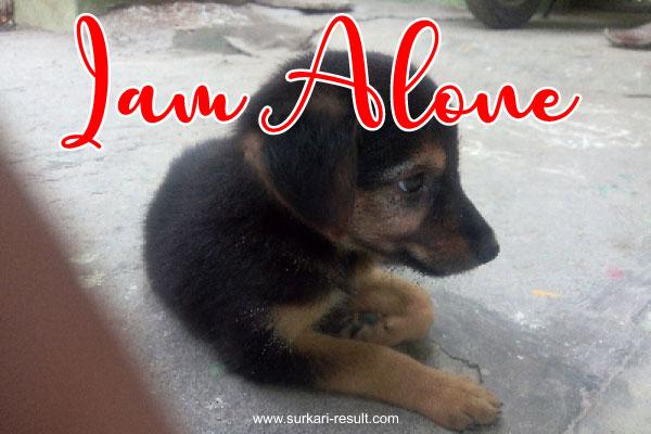 alone-status-images