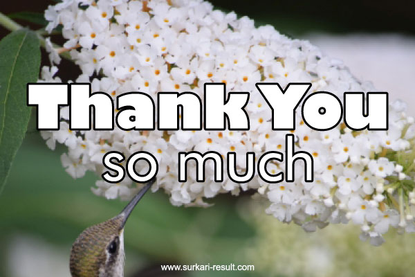 thank-you-so-much-with-flowers