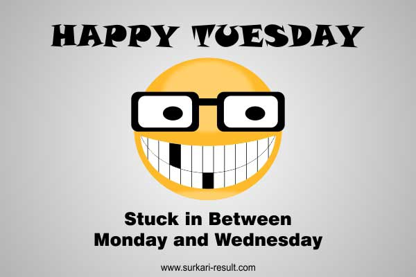 Happy-Tuesday-Images-funny