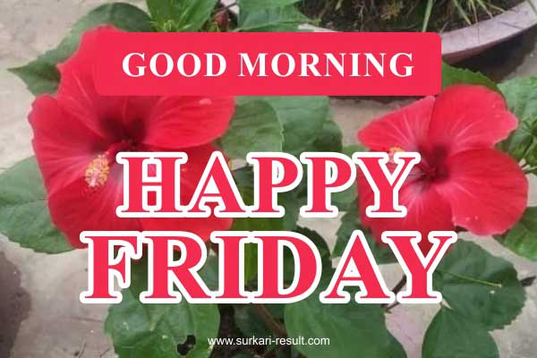 happy-friday-images-flowers-red