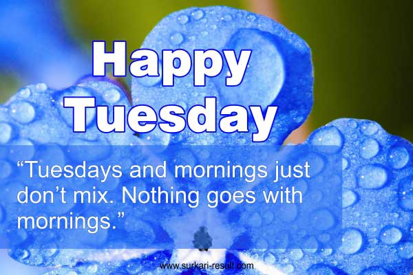 happy-tuesday-images-quotes