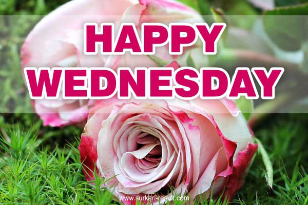 Happy-Wednesday-Images-flowers