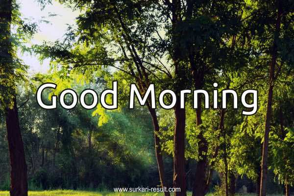 good-morning-image-green