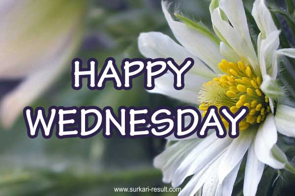 happy-Wednesday-images