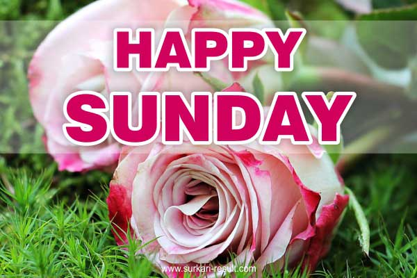 Happy-sunday-Images-flowers