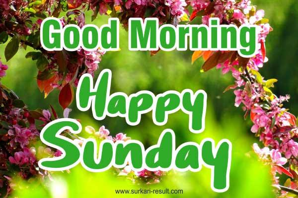 good-morning-happy-sunday-pic