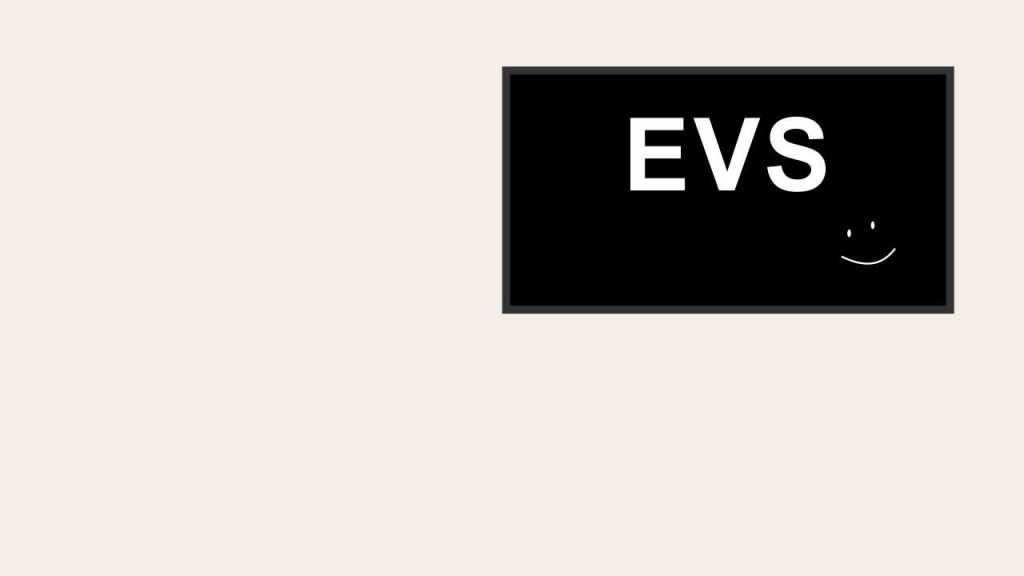 evs-background-zoom