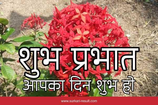 good-morning-hindi-have-nice-day