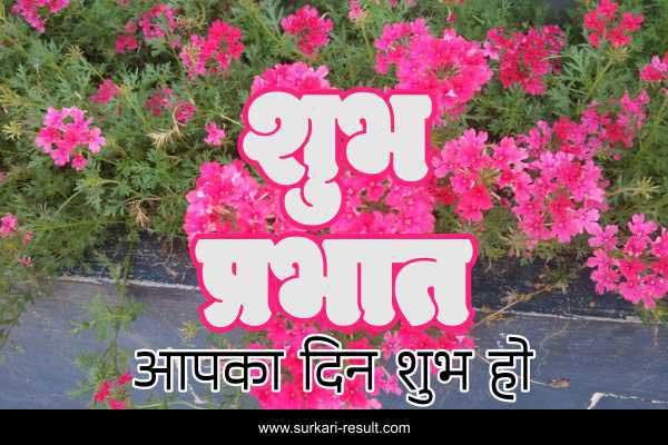 shubh-prabhat-good-morning-pink