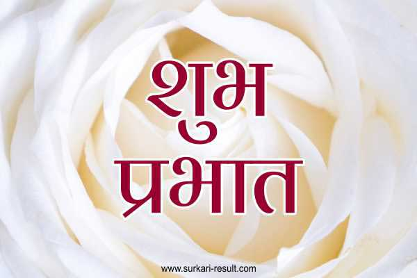 shubh-prabhat-images-white-fower