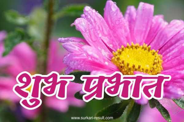shubh-prabhat-pink-image