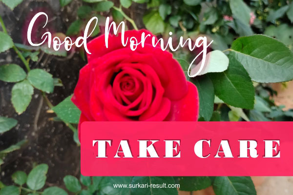 take-care-good-morning-rose-img