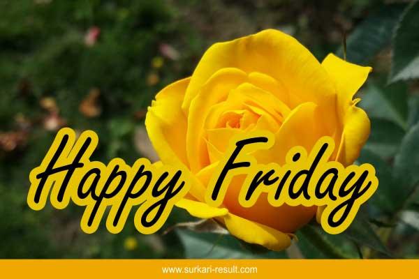 happy-friday-yellow-flower-rose