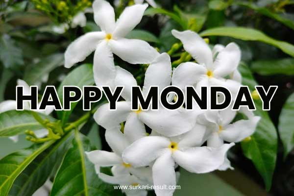 happy-monday-images-white