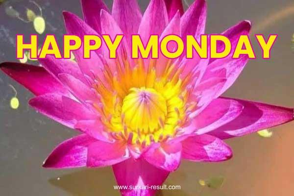 happy-monday-lotus-flower