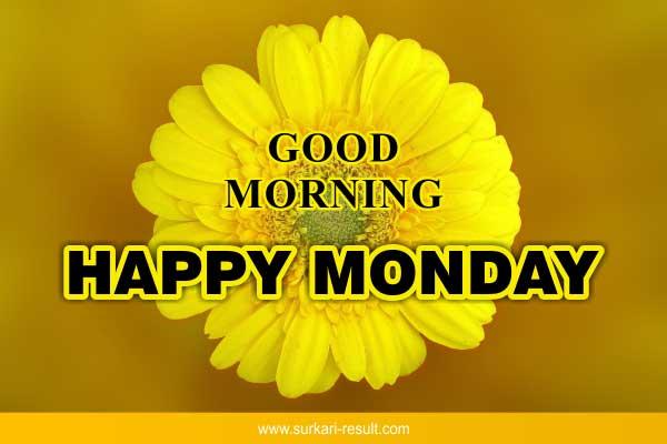 happy-monday-yellow-flower