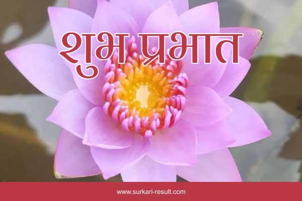 suprabhat-images-lotus