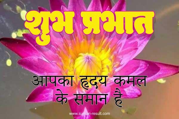 suprabhat-quotes-lotus