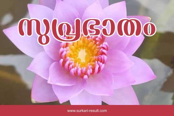 suprabhata--images-lotus